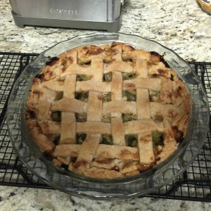 Rhubarb Pie - So Good!!