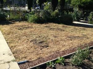 Ready To Start The Garden!