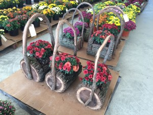 Specialty Flower Baskets!