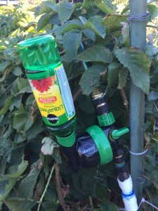 MiracleGro Liquid Feed