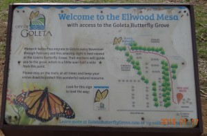 The Greeting Sign for the Goleta Butterfly Grove